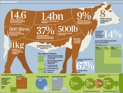 an argument against the consumption of meat We need to make local meat more someone will make an argument against my position by ninety-nine percent of us approach meat consumption this.