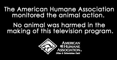 No animals harmed