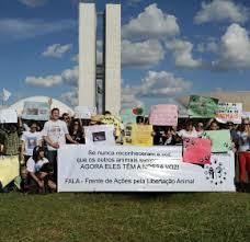 Brazilian Advocates