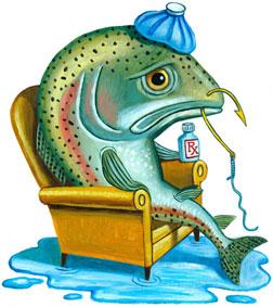 1_123125_2170587_2209173_2219275_090528_gr_fish_illustrationtn